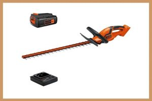 Tips for Using Cordless Hedge Trimmers