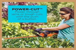 Tips for Using an Electric Hedge Trimmer